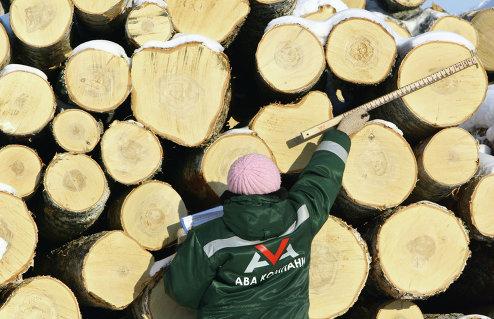 Деревообрабатывающее предприятие зао